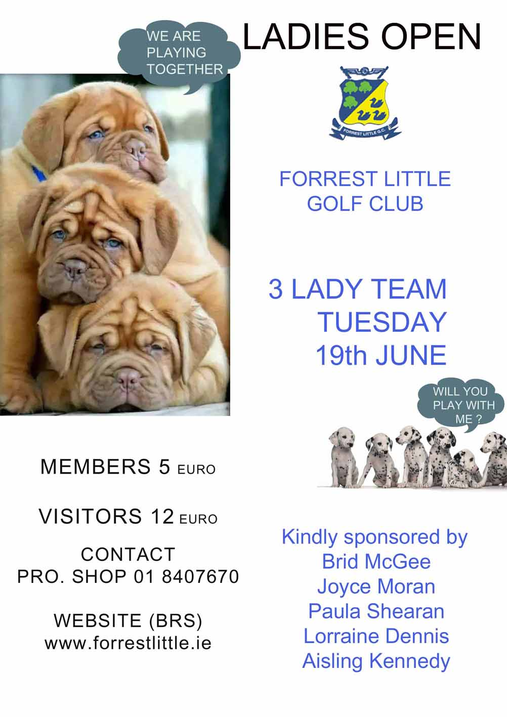 Ladies Open 19th June